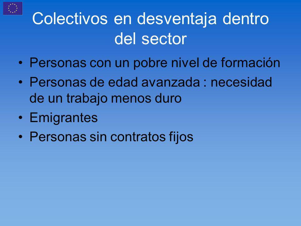 Colectivos en desventaja dentro del sector Personas con un pobre nivel de formación Personas de edad avanzada : necesidad de un trabajo menos duro Emigrantes Personas sin contratos fijos