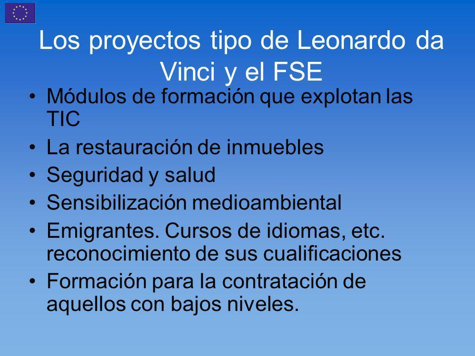Los proyectos tipo de Leonardo da Vinci y el FSE Módulos de formación que explotan las TIC La restauración de inmuebles Seguridad y salud Sensibilización medioambiental Emigrantes.