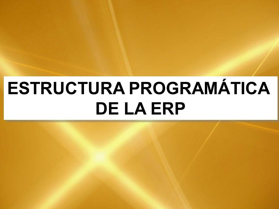 ESTRUCTURA PROGRAMÁTICA DE LA ERP ESTRUCTURA PROGRAMÁTICA DE LA ERP