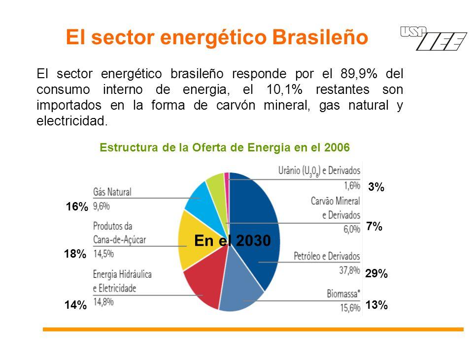 El sector energético Brasileño El sector energético brasileño responde por el 89,9% del consumo interno de energia, el 10,1% restantes son importados en la forma de carvón mineral, gas natural y electricidad.