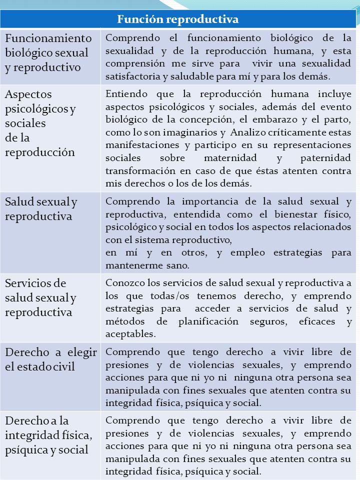 Función reproductiva Funcionamiento biológico sexual y reproductivo Comprendo el funcionamiento biológico de la sexualidad y de la reproducción humana