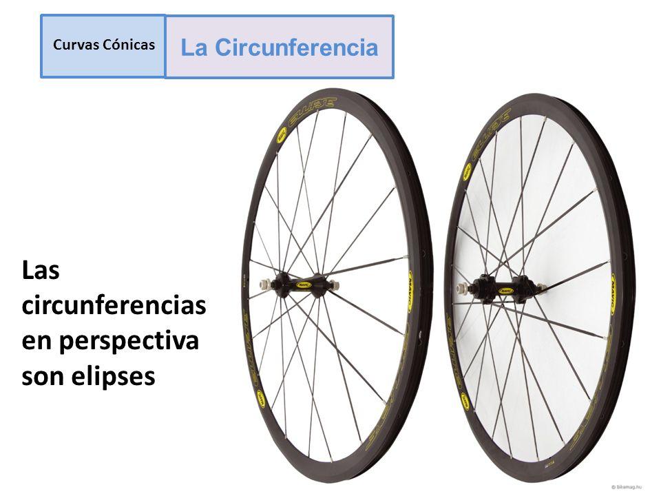 Las circunferencias en perspectiva son elipses Curvas Cónicas La Circunferencia