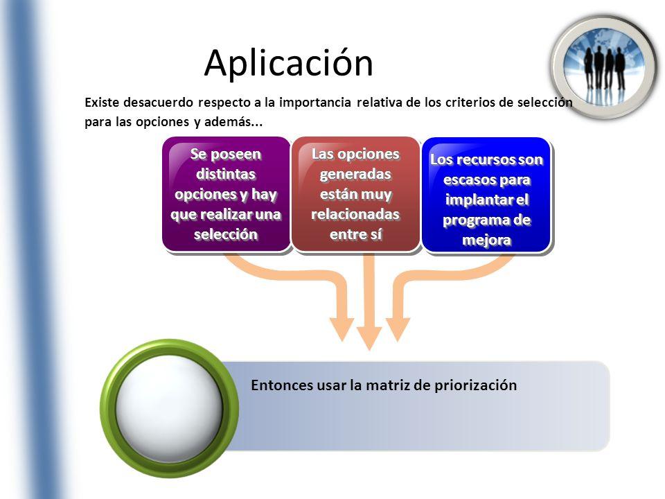 Aplicación Se poseen distintas opciones y hay que realizar una selección Las opciones generadas están muy relacionadas entre sí Los recursos son escas