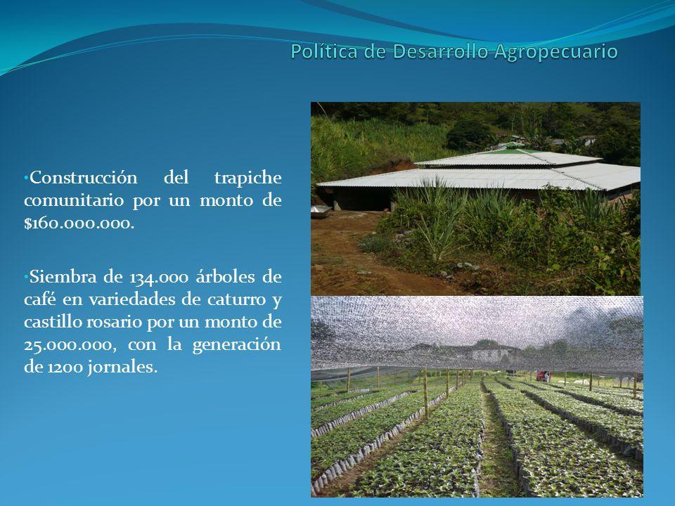 Rehabilitación de la vía Alto de Morron – Macancan Vereda Hoyo Grande Culminación de proyecto rutas de vida sector La Aguacatala.