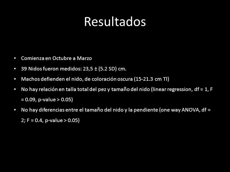Resultados Afuera Eje Denrto 16 especies bentónicas diferentes Existieron diferencias en el nido (one way ANOVA, df = 2; F = 6.5, p-value < 0.01) Comienza en Octubre a Marzo 39 Nidos fueron medidos: 23,5 ± (5.2 SD) cm.