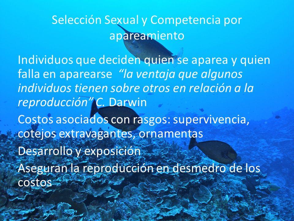 Selección Sexual y Competencia por apareamiento Individuos que deciden quien se aparea y quien falla en aparearse la ventaja que algunos individuos ti