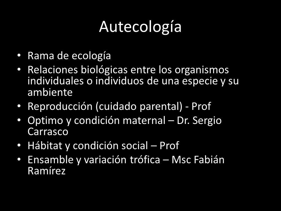 Autecología Rama de ecología Relaciones biológicas entre los organismos individuales o individuos de una especie y su ambiente Reproducción (cuidado parental) - Prof Optimo y condición maternal – Dr.