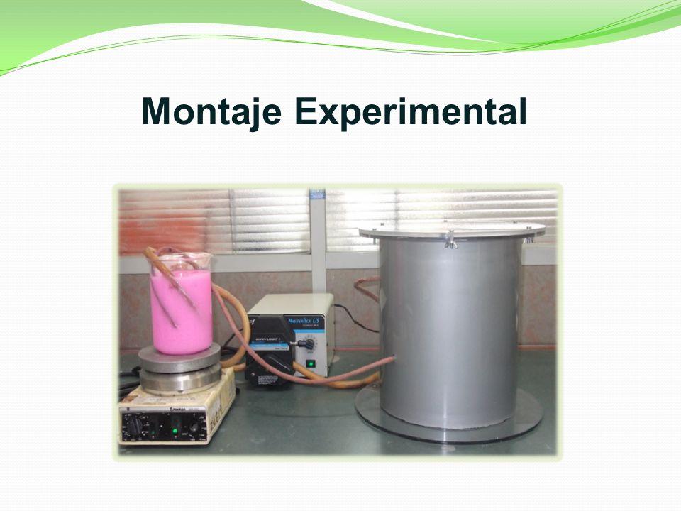 Montaje Experimental