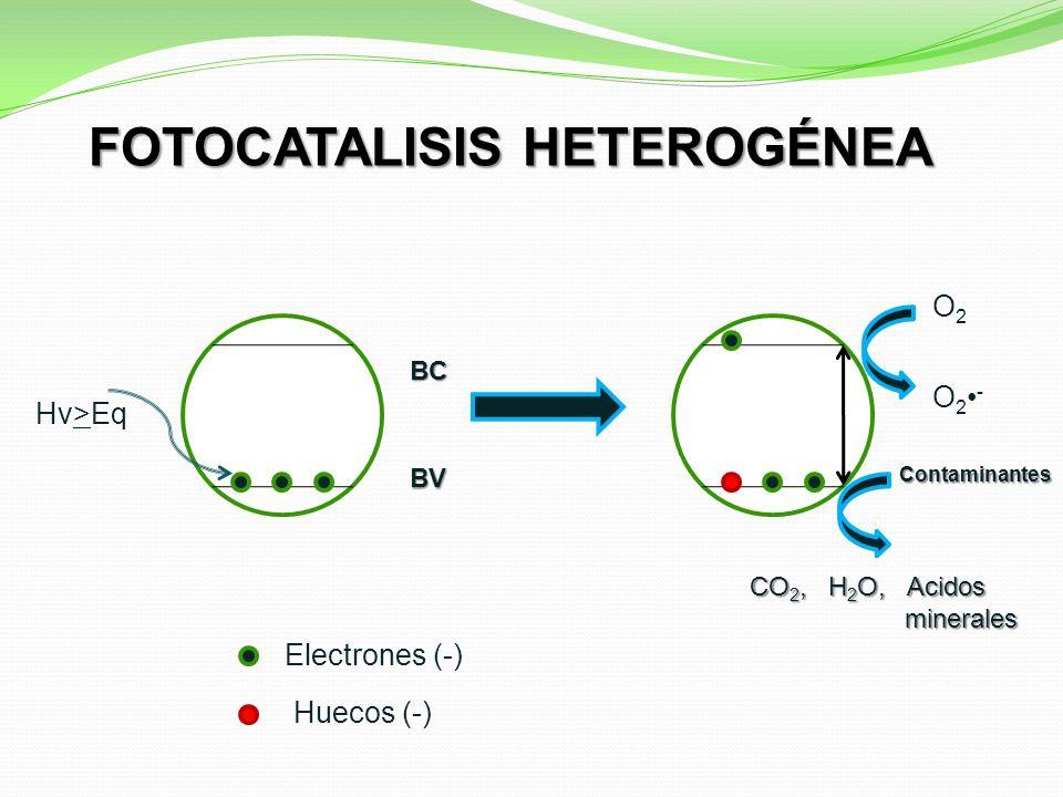 BV BC Electrones (-) Huecos (-) O2O2 O 2 - Contaminantes CO 2, H 2 O, Acidos minerales minerales Hv>Eq FOTOCATALISIS HETEROGÉNEA