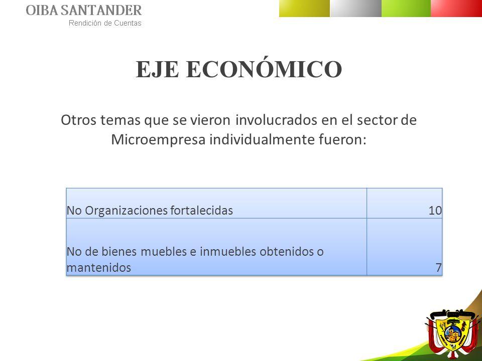 EJE ECONÓMICO Otros temas que se vieron involucrados en el sector de Microempresa individualmente fueron:
