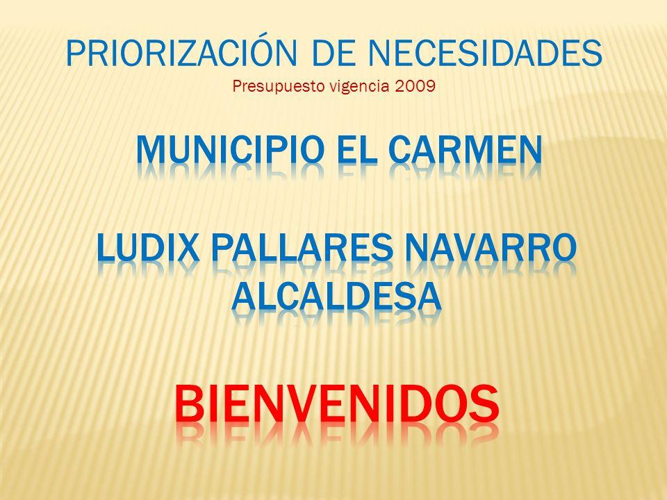 PRIORIZACIÓN DE NECESIDADES Presupuesto vigencia 2009