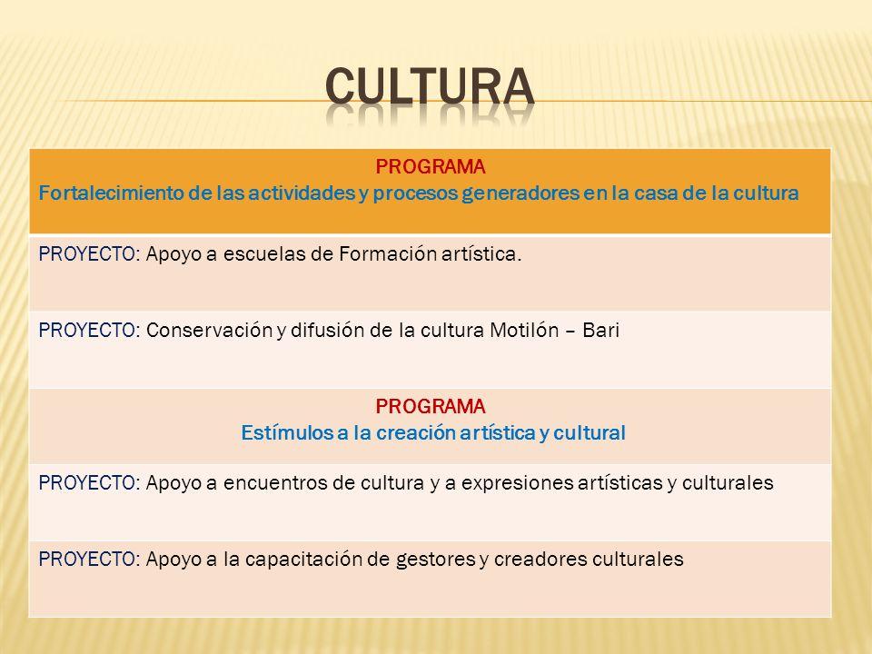 PROGRAMA Fortalecimiento de las actividades y procesos generadores en la casa de la cultura PROYECTO: Apoyo a escuelas de Formación artística. PROYECT