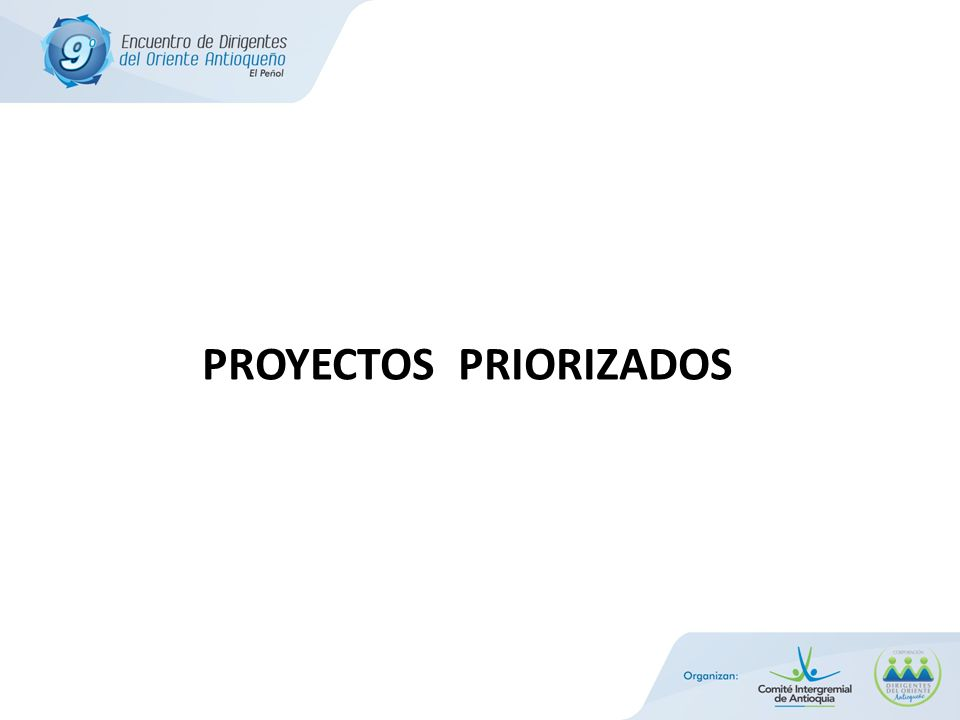 PROYECTOS PRIORIZADOS