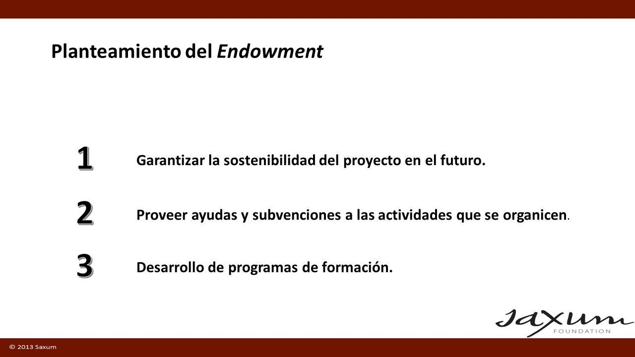 Planteamiento del Endowment Proveer ayudas y subvenciones a las actividades que se organicen.