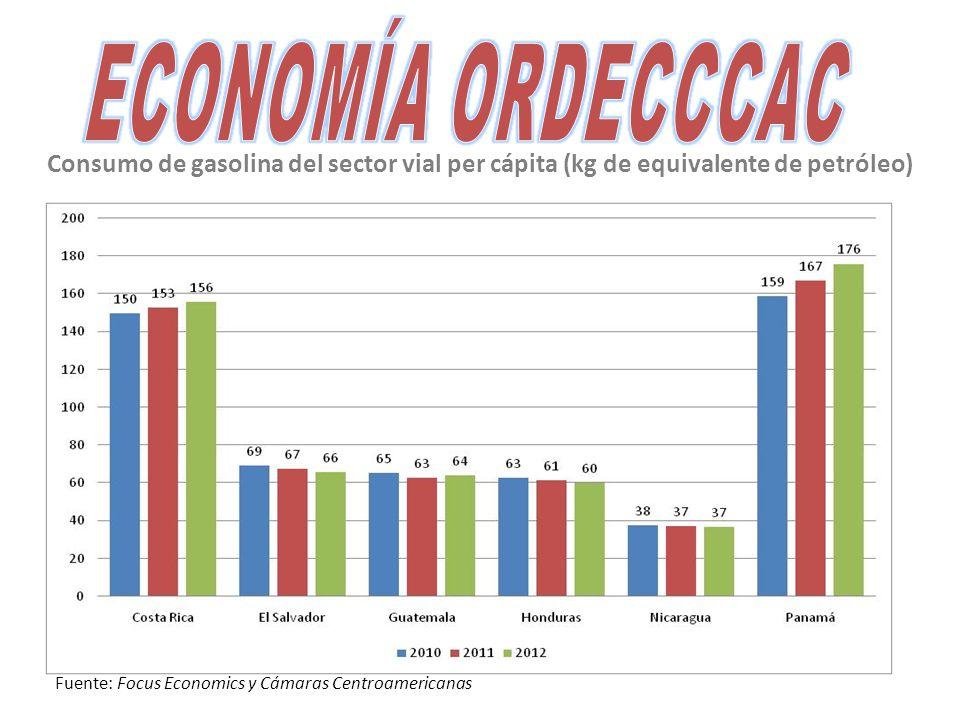 Consumo de gasolina del sector vial per cápita (kg de equivalente de petróleo) Fuente: Focus Economics y Cámaras Centroamericanas