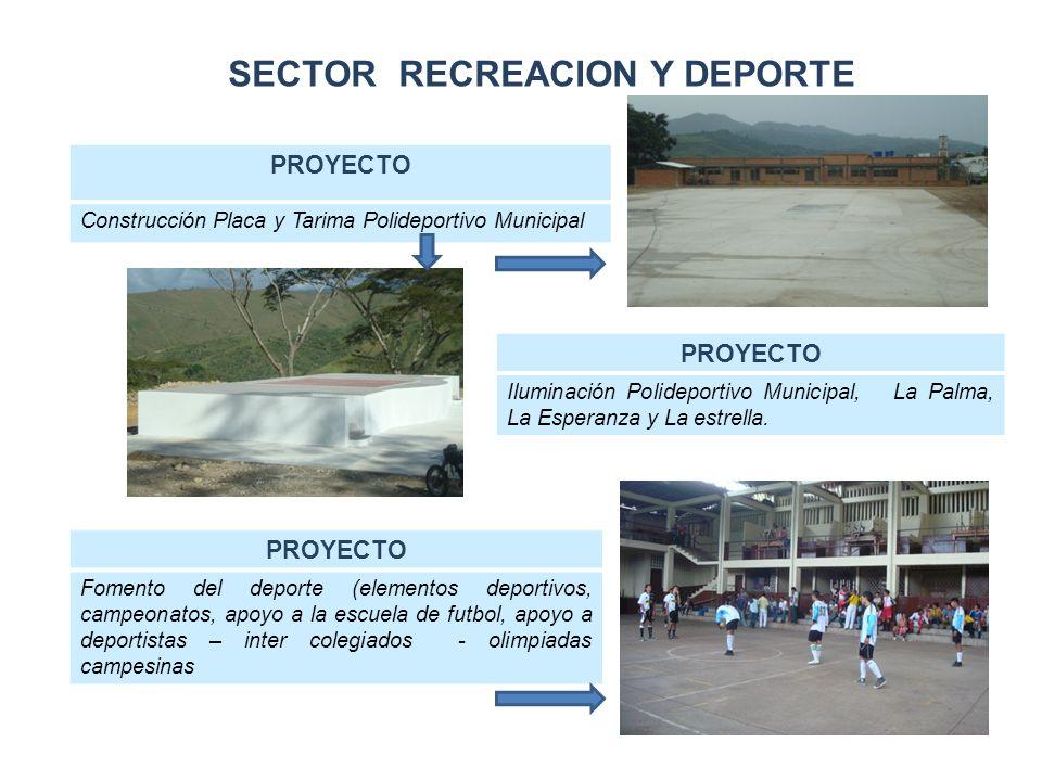 SECTOR RECREACION Y DEPORTE PROYECTO Construcción Placa y Tarima Polideportivo Municipal PROYECTO Iluminación Polideportivo Municipal, La Palma, La Esperanza y La estrella.