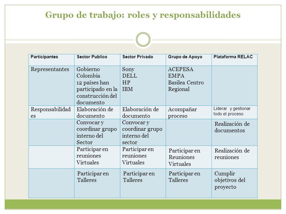 Grupo de trabajo: roles y responsabilidades ParticipantesSector PublicoSector PrivadoGrupo de ApoyoPlataforma RELAC RepresentantesGobierno Colombia 12