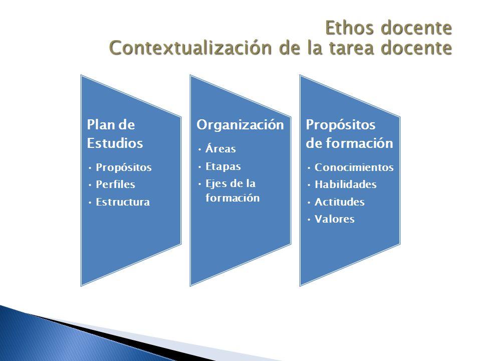 Plan de Estudios Propósitos Perfiles Estructura Organización Áreas Etapas Ejes de la formación Propósitos de formación Conocimientos Habilidades Actitudes Valores Ethos docente Contextualización de la tarea docente