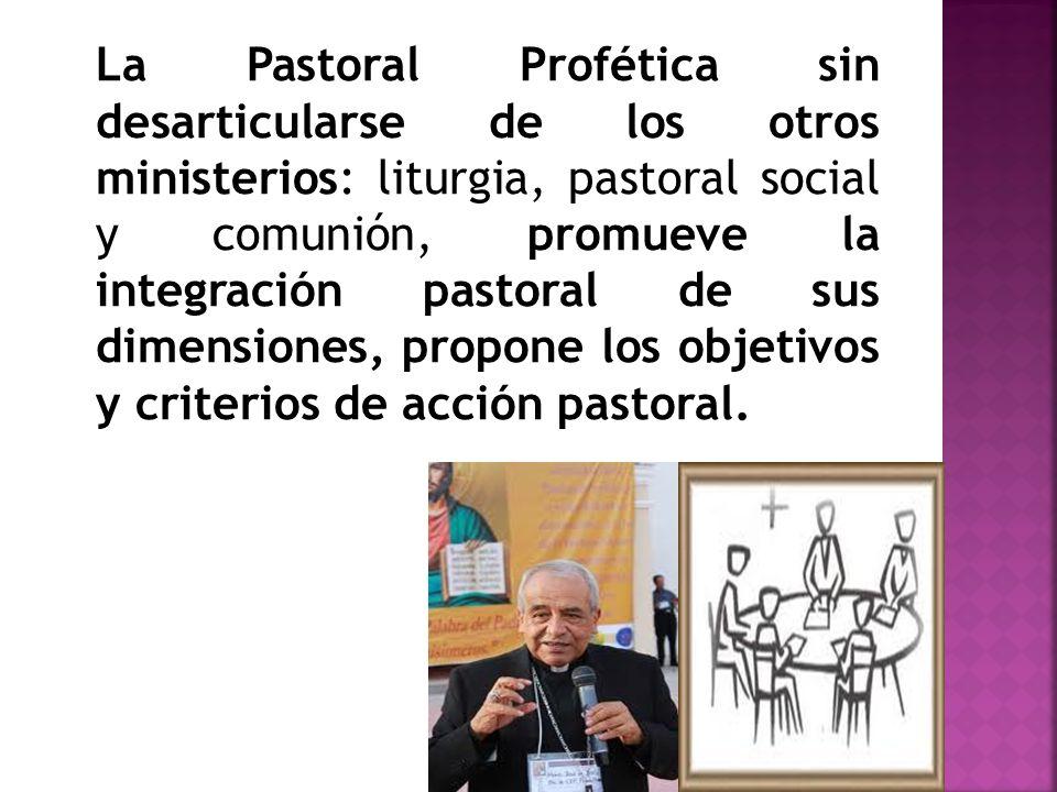 La Pastoral Profética sin desarticularse de los otros ministerios: liturgia, pastoral social y comunión, promueve la integración pastoral de sus dimen