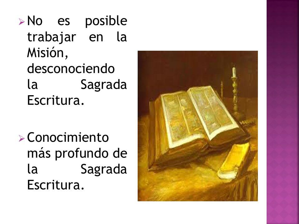 No es posible trabajar en la Misión, desconociendo la Sagrada Escritura. Conocimiento más profundo de la Sagrada Escritura.