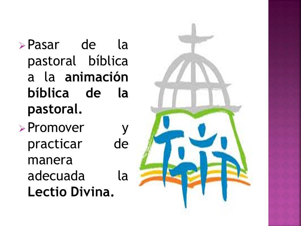 Pasar de la pastoral bíblica a la animación bíblica de la pastoral. Promover y practicar de manera adecuada la Lectio Divina.