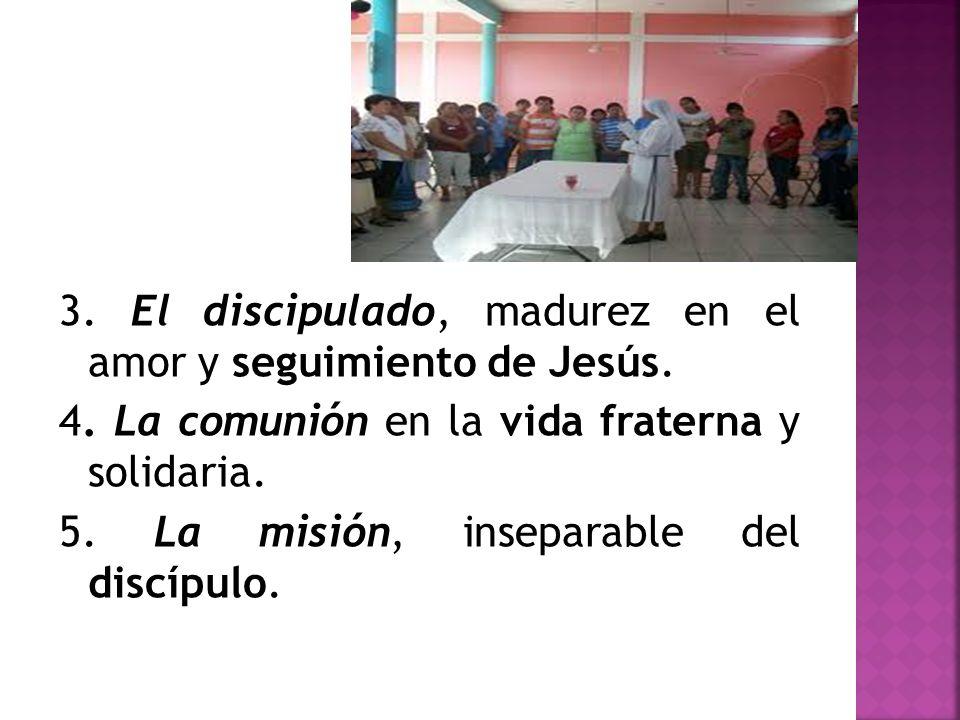 3. El discipulado, madurez en el amor y seguimiento de Jesús. 4. La comunión en la vida fraterna y solidaria. 5. La misión, inseparable del discípulo.