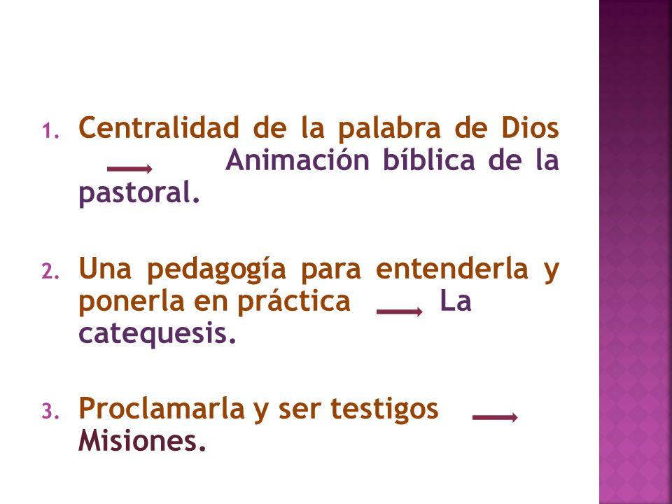 1. Centralidad de la palabra de Dios Animación bíblica de la pastoral. 2. Una pedagogía para entenderla y ponerla en práctica La catequesis. 3. Procla