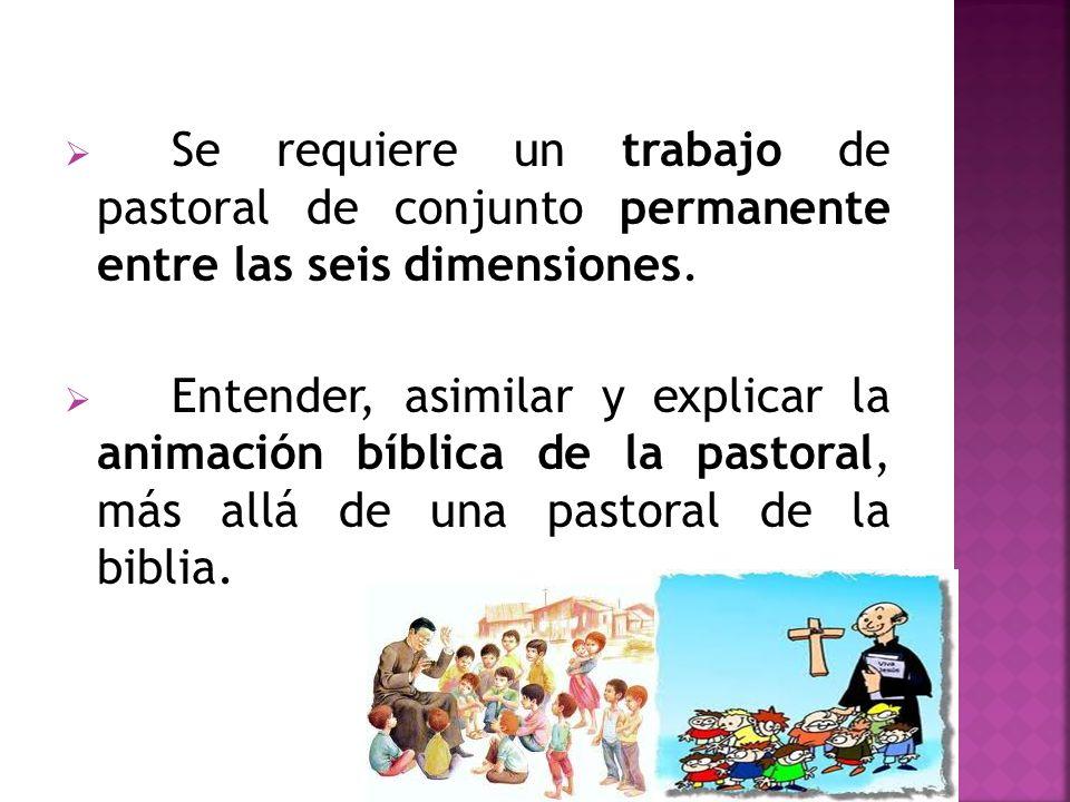 Se requiere un trabajo de pastoral de conjunto permanente entre las seis dimensiones. Entender, asimilar y explicar la animación bíblica de la pastora