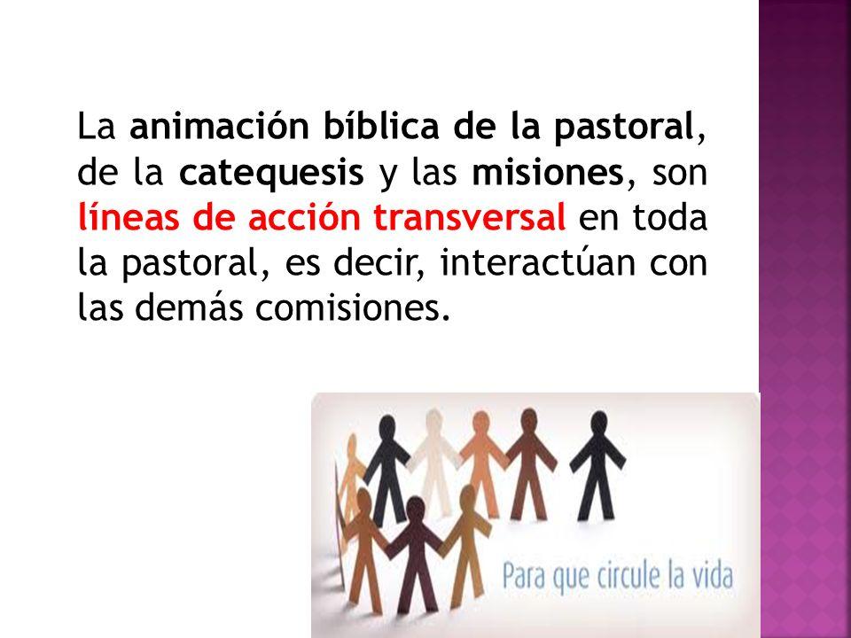 La animación bíblica de la pastoral, de la catequesis y las misiones, son líneas de acción transversal en toda la pastoral, es decir, interactúan con