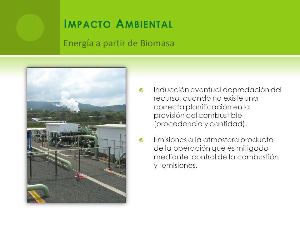 I MPACTO A MBIENTAL Inducción eventual depredación del recurso, cuando no existe una correcta planificación en la provisión del combustible (procedencia y cantidad).