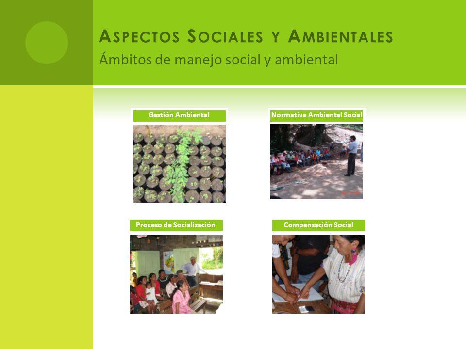 Ámbitos de manejo social y ambiental A SPECTOS S OCIALES Y A MBIENTALES Gestión AmbientalNormativa Ambiental Social Proceso de SocializaciónCompensación Social