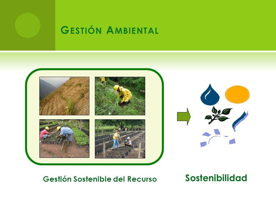 Sostenibilidad Gestión Sostenible del Recurso G ESTIÓN A MBIENTAL