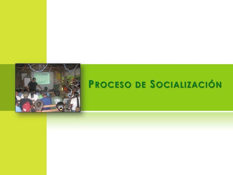 P ROCESO DE S OCIALIZACIÓN