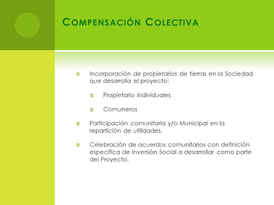 Incorporación de propietarios de tierras en la Sociedad que desarrolla el proyecto: Propietario individuales Comuneros Participación comunitaria y/o Municipal en la repartición de utilidades.