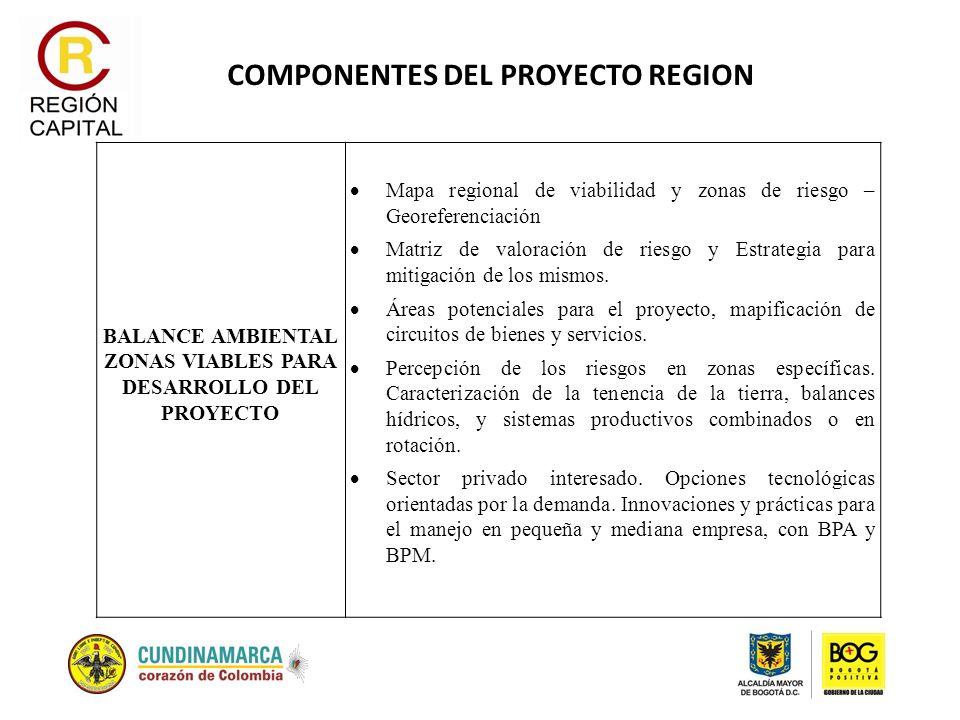 COMPONENTES DEL PROYECTO REGION BALANCE AMBIENTAL ZONAS VIABLES PARA DESARROLLO DEL PROYECTO Mapa regional de viabilidad y zonas de riesgo – Georefere