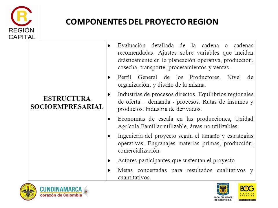 COMPONENTES DEL PROYECTO REGION ESTRUCTURA SOCIOEMPRESARIAL Evaluación detallada de la cadena o cadenas recomendadas. Ajustes sobre variables que inci