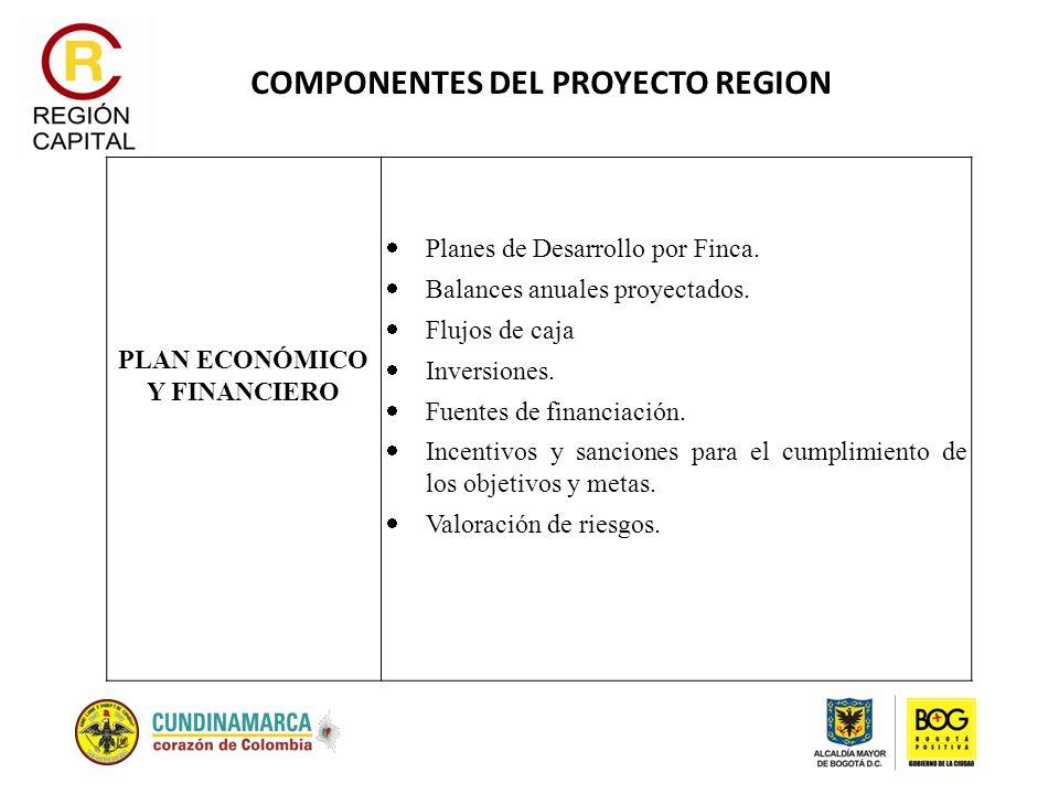 COMPONENTES DEL PROYECTO REGION PLAN ECONÓMICO Y FINANCIERO Planes de Desarrollo por Finca. Balances anuales proyectados. Flujos de caja Inversiones.