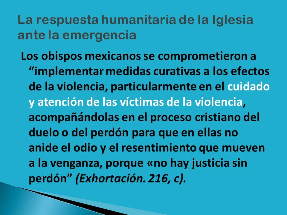 Los obispos mexicanos se comprometieron a implementar medidas curativas a los efectos de la violencia, particularmente en el cuidado y atención de las