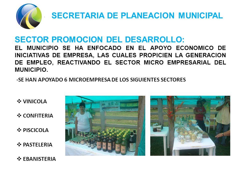 SECRETARIA DE PLANEACION MUNICIPAL SECTOR PROMOCION DEL DESARROLLO: EL MUNICIPIO SE HA ENFOCADO EN EL APOYO ECONOMICO DE INICIATIVAS DE EMPRESA, LAS CUALES PROPICIEN LA GENERACION DE EMPLEO, REACTIVANDO EL SECTOR MICRO EMPRESARIAL DEL MUNICIPIO.
