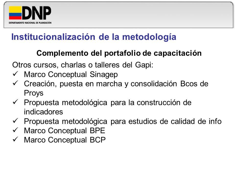 Complemento del portafolio de capacitación Otros cursos, charlas o talleres del Gapi: Marco Conceptual Sinagep Creación, puesta en marcha y consolidac