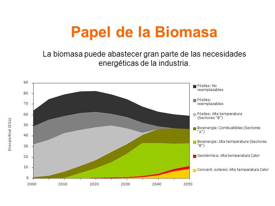 Papel de la Biomasa La biomasa puede abastecer gran parte de las necesidades energéticas de la industria.