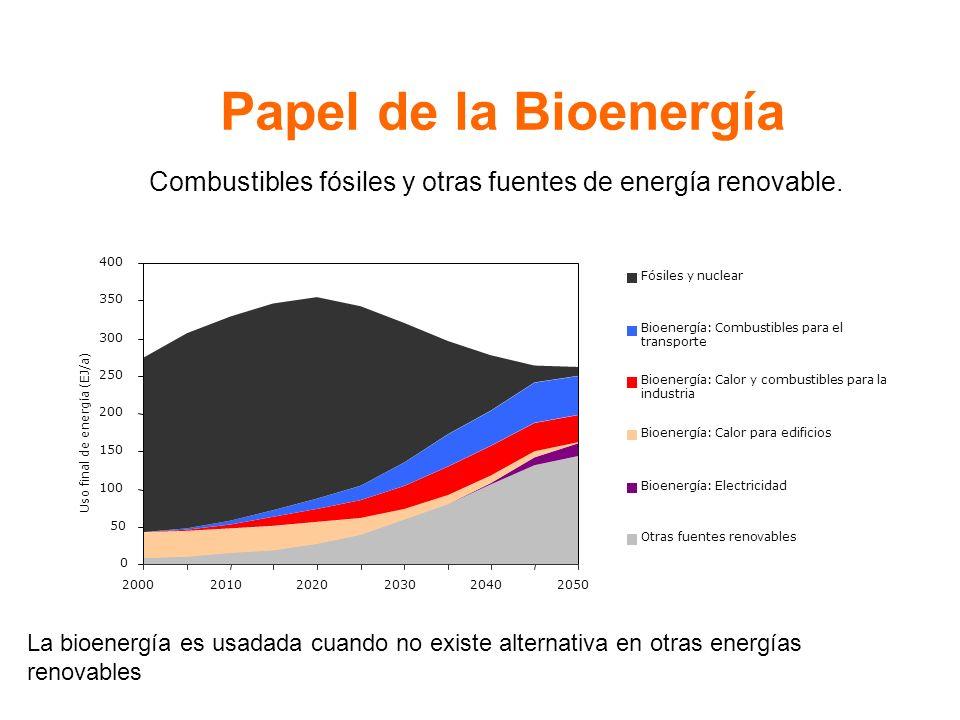 Papel de la Bioenergía La bioenergía es usadada cuando no existe alternativa en otras energías renovables Combustibles fósiles y otras fuentes de energía renovable.