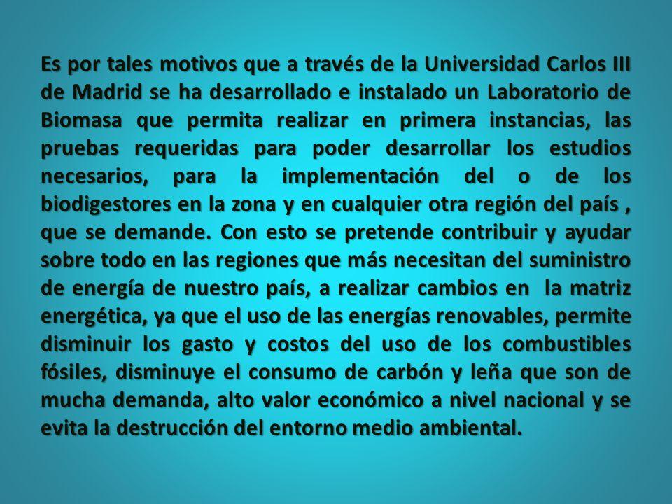 Es por tales motivos que a través de la Universidad Carlos III de Madrid se ha desarrollado e instalado un Laboratorio de Biomasa que permita realizar