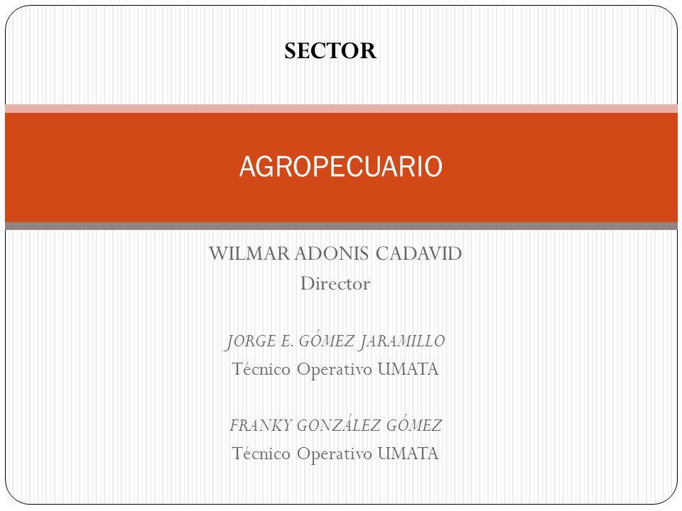 WILMAR ADONIS CADAVID Director JORGE E. GÓMEZ JARAMILLO Técnico Operativo UMATA FRANKY GONZÁLEZ GÓMEZ Técnico Operativo UMATA AGROPECUARIO SECTOR