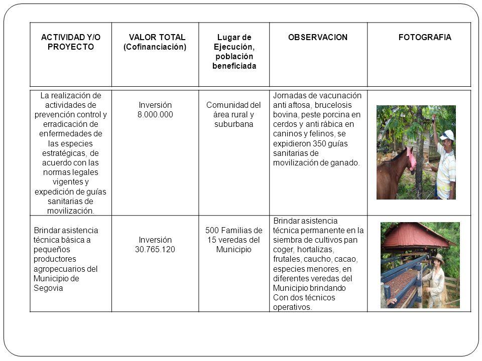 ACTIVIDAD Y/O PROYECTO VALOR TOTAL (Cofinanciación) Lugar de Ejecución, población beneficiada OBSERVACIONFOTOGRAFIA La realización de actividades de p