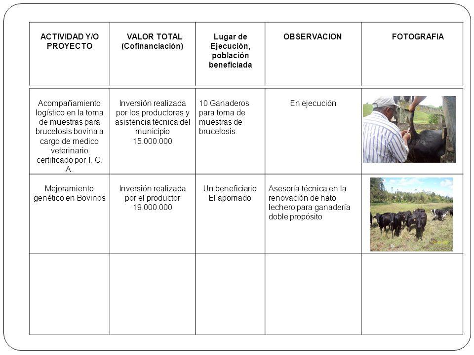 ACTIVIDAD Y/O PROYECTO VALOR TOTAL (Cofinanciación) Lugar de Ejecución, población beneficiada OBSERVACIONFOTOGRAFIA Acompañamiento logístico en la tom
