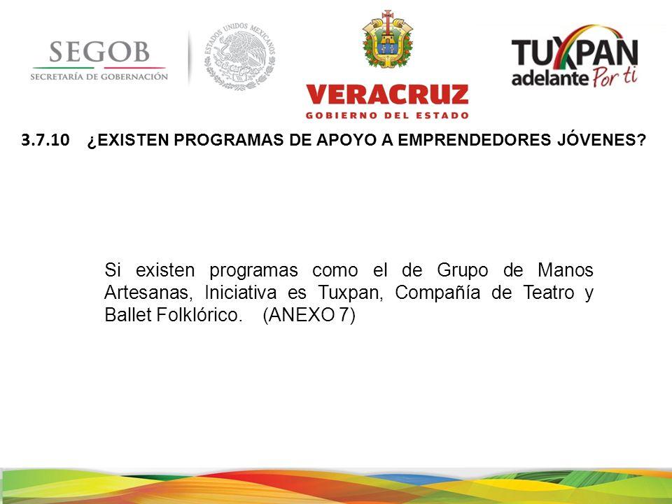 Si existen programas como el de Grupo de Manos Artesanas, Iniciativa es Tuxpan, Compañía de Teatro y Ballet Folklórico.