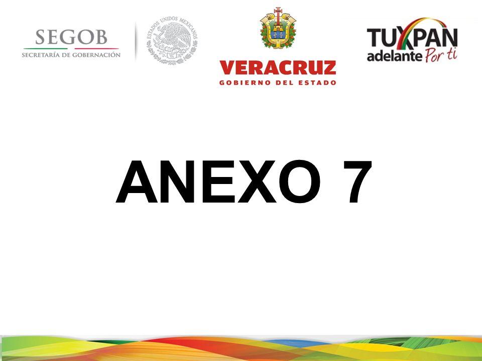 ANEXO 7