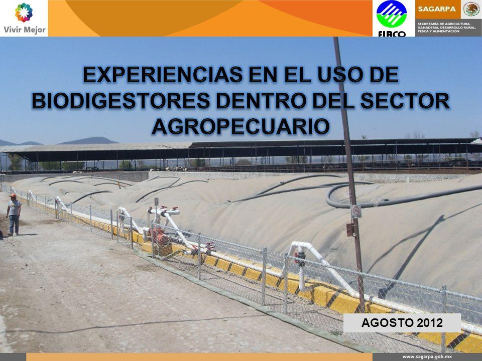 MANUAL DE BUENAS PRÁCTICAS Dimensionamiento Construcción del Biodigestor Medidas de Seguridad y Mantenimiento Requerimientos Recepción de Proyectos
