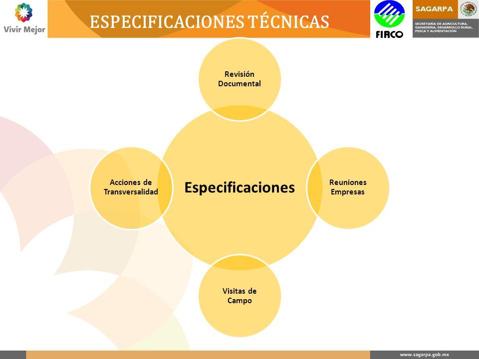 Especificaciones Revisión Documental Reuniones Empresas Visitas de Campo Acciones de Transversalidad ESPECIFICACIONES TÉCNICAS